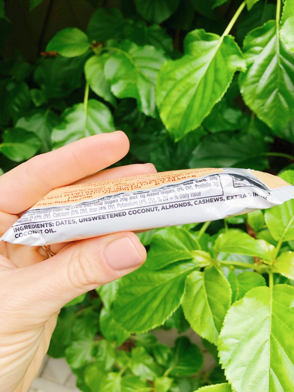 Holding a coconut cream pie lara bar with ingredients showing in front of a green bush