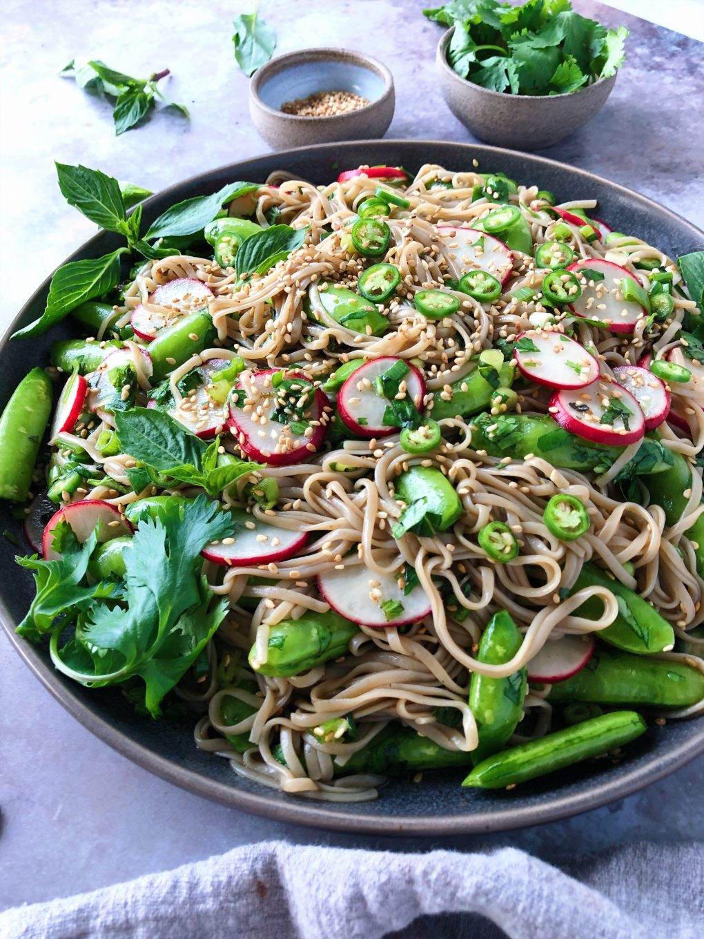 Side angle shot of vegan soba noodle salad with vegetables and herbs - sugar snap peas, radishes, chilies, and sesame seeds on a moody grey background