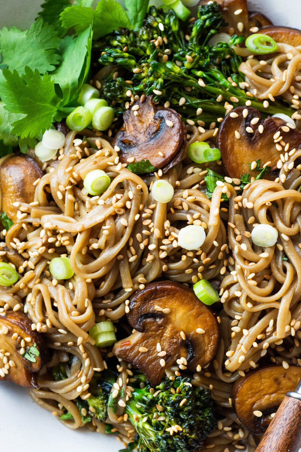 Close up shot of a bowl of gluten free mushroom soba noodle stir fry topped with sesame seeds, green onions, and fresh cilantro.